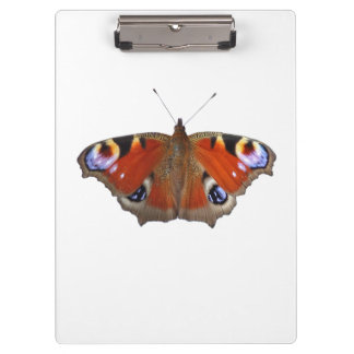 peacock butterfly clip board