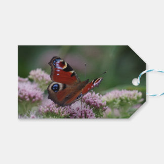 Peacock Butterfly Gift Tags