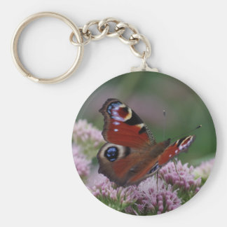 Peacock Butterfly Keyring Basic Round Button Key Ring