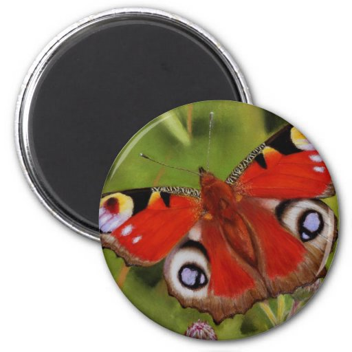 PEACOCK BUTTERFLY REFRIGERATOR MAGNET