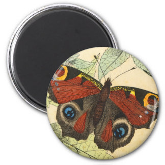 Peacock Butterfly 6 Cm Round Magnet