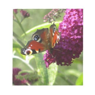 Peacock Butterfly Notepad