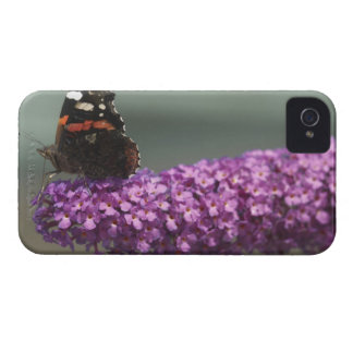 Peacock butterfly on flower Case-Mate iPhone 4 case