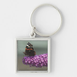 Peacock butterfly on flower Silver-Colored square key ring
