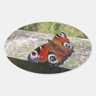 Peacock Butterfly Oval Sticker