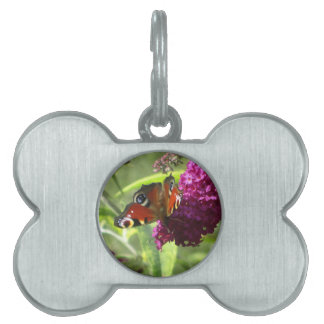 Peacock Butterfly Pet Name Tags