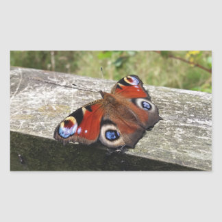 Peacock Butterfly Rectangular Sticker
