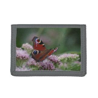 Peacock Butterfly Wallet