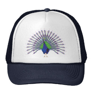Peacock Caps Cap