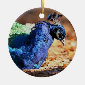 Peacock Christmas Ornament