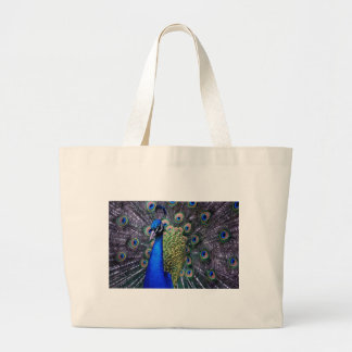 Peacock Close Up Canvas Bag
