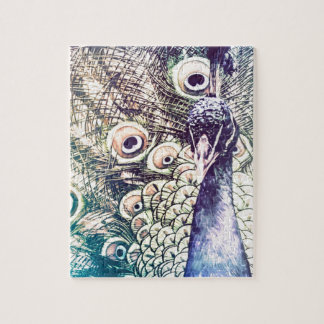 peacock, color, oil painting, australia jigsaw puzzle