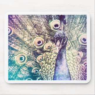 peacock, color, oil painting, australia mouse pad