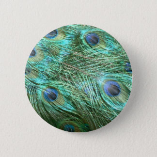 Peacock colours 6 cm round badge