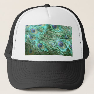 Peacock colours trucker hat