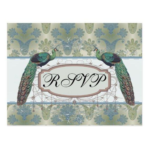 peacock damask and peafowl elegant design postcards