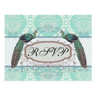 peacock design and aqua blue damask design postcard