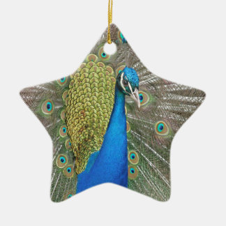 Peacock Design Christmas Ornament