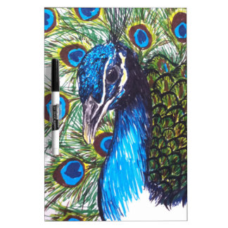 PEACOCK DRY ERASE BOARDS