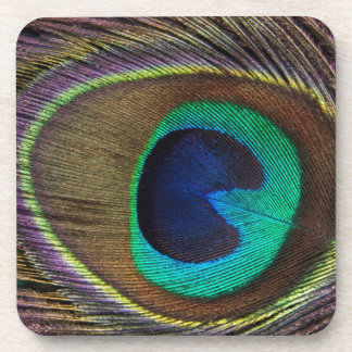 Peacock Eye Feather Coaster