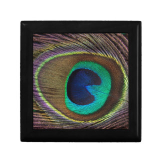 Peacock Eye Feather Gift Box