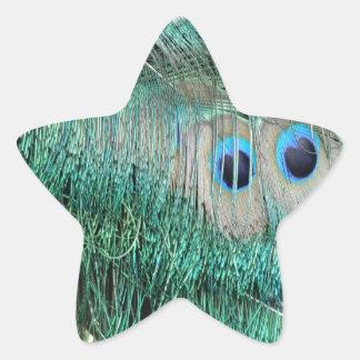 Peacock Eye Feathers Star Sticker