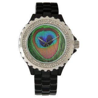 Peacock Eye Watch