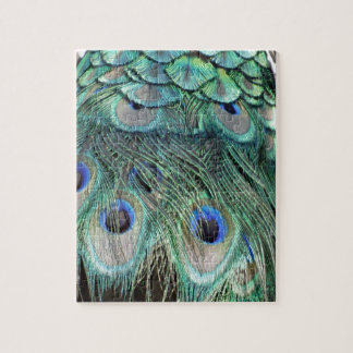 Peacock Eyes And Feathers Jigsaw Puzzle