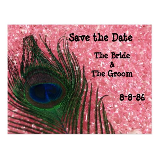 Peacock Feather and Pink Rocks Still Save the Date Postcard
