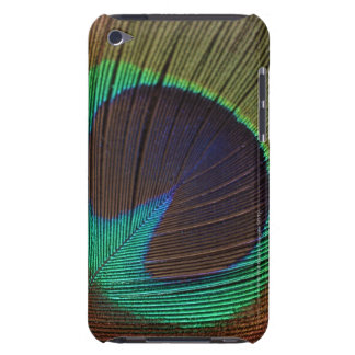 Peacock feather barely there iPod cover