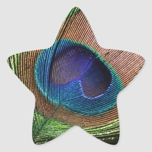 Peacock feather beautiful blue star stickers