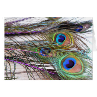 Peacock Feather Blank Card with Vivid Colors