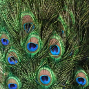 peacock feather brushed polyester tree skirt - Peacock Christmas Tree Skirt