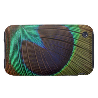 Peacock feather tough iPhone 3 cases
