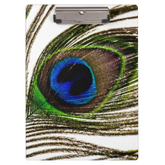 Peacock Feather Clipboard