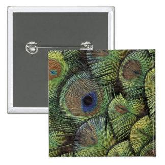 Peacock feather design 2 15 cm square badge