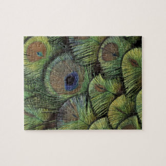 Peacock feather design 2 jigsaw puzzle
