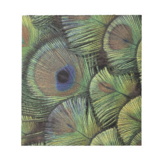 Peacock feather design 2 notepad