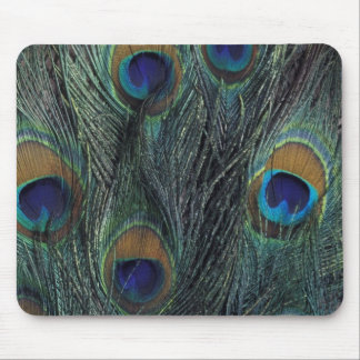 Peacock feather design mouse mat