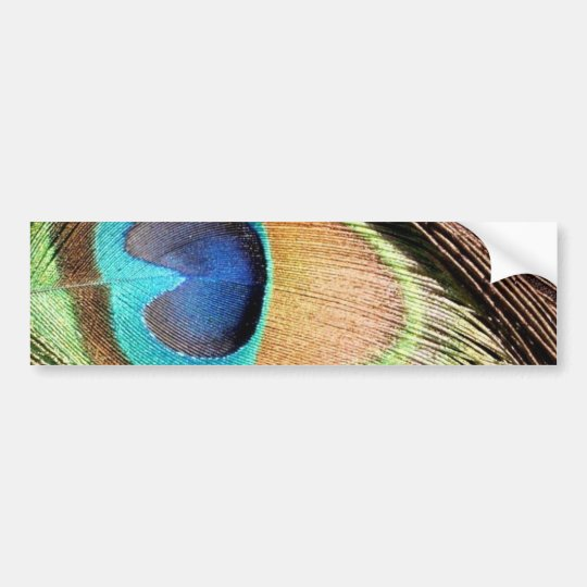 Peacock Feather Designs Bumper Sticker