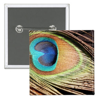 Peacock Feather Designs Square Pin