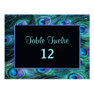 Peacock Feather Drama - Table Seating Number Postcard