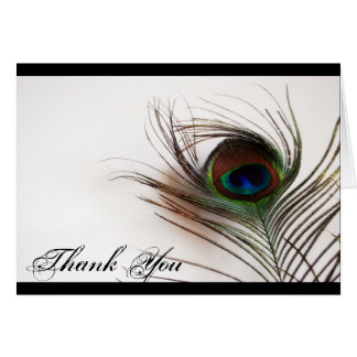 Peacock Feather Glamor Thank You Card