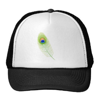Peacock Feather Mesh Hat