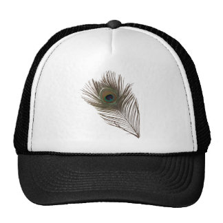 Peacock feather trucker hats