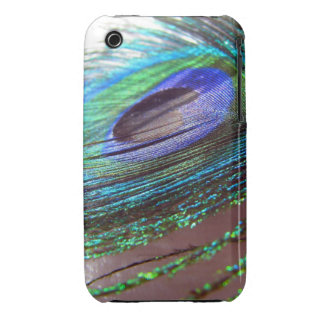 Peacock feather iPhone 3gs case