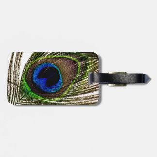 Peacock Feather Luggage Tag