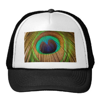 Peacock feather mesh hats