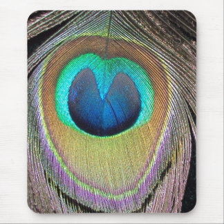 peacock feather mouse mat