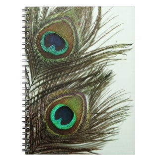 Peacock Feather Notebook